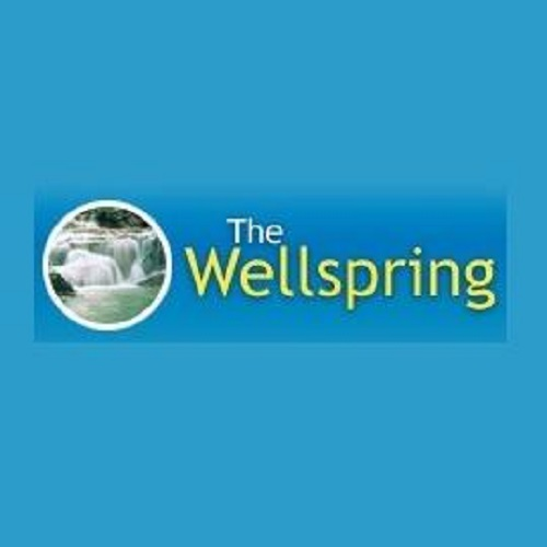 The Wellness Spring